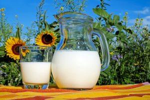 Eiweiss Diät mit Whey Protein